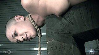 Randy dominatrix has got got Abigail Dupree locked to wooden posts